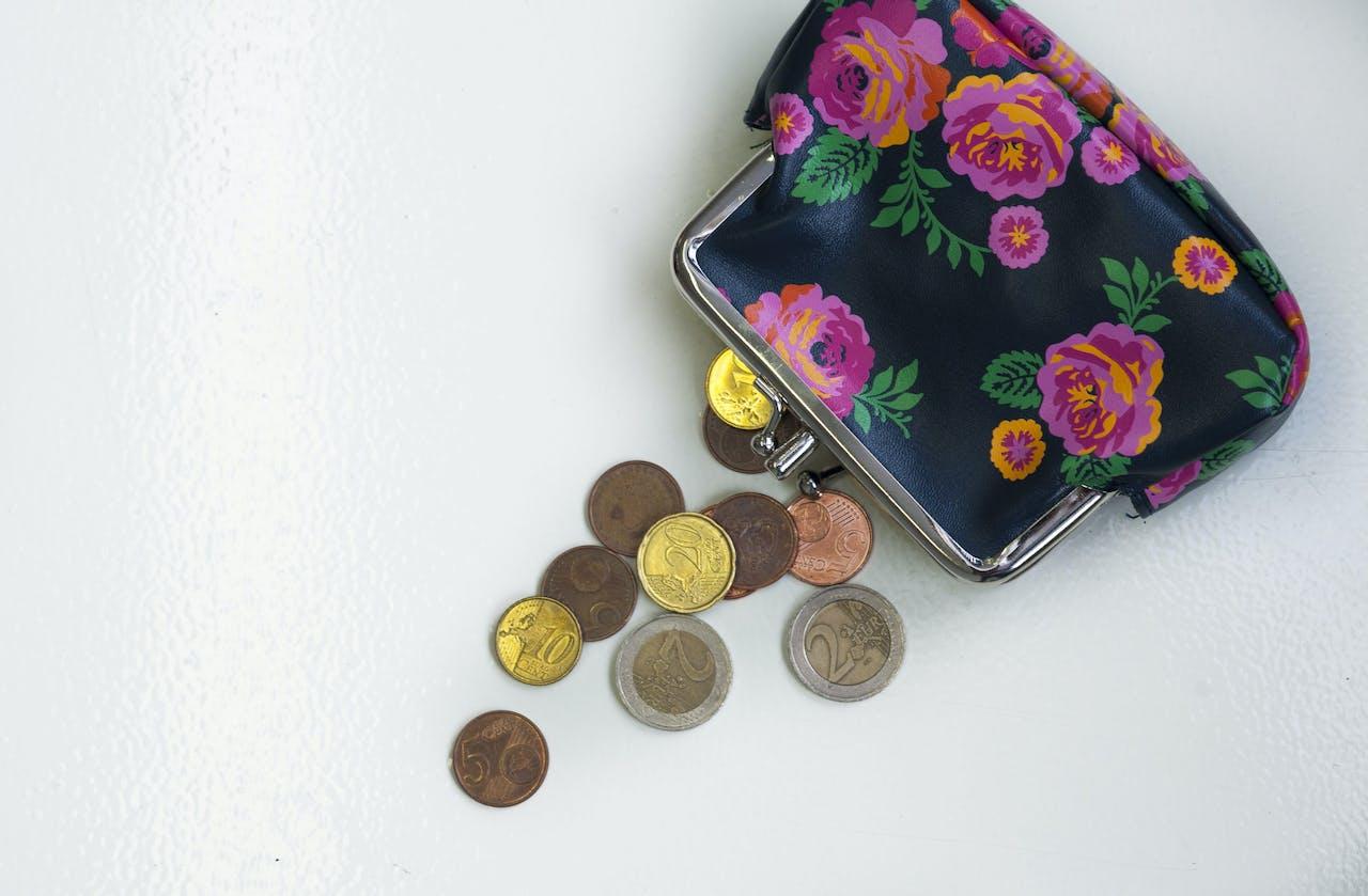 DEN HAAG - Portemonnee met kleingeld. ANP XTRA ROOS KOOLE