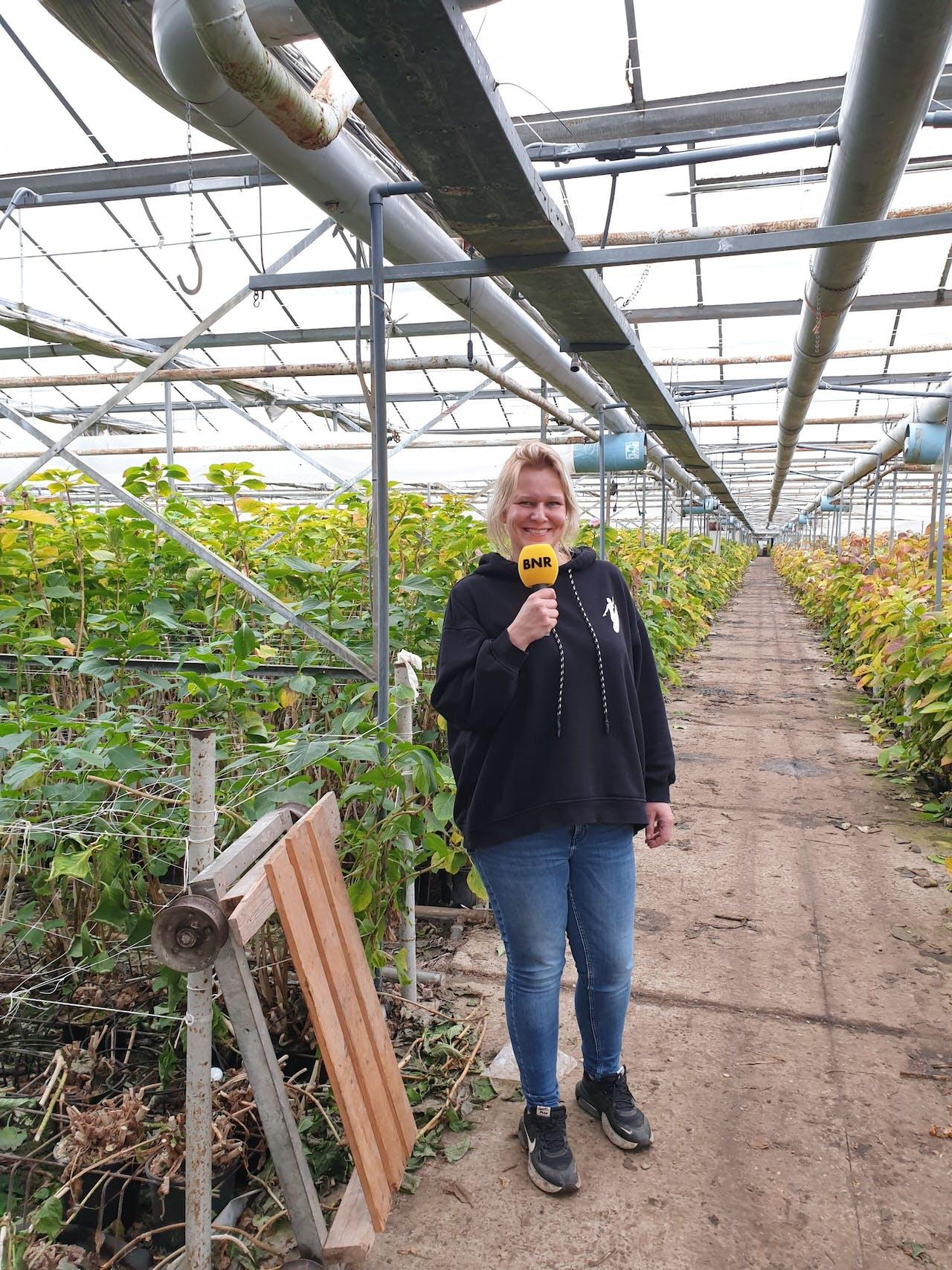 Ellen van der Knaap van Knaapflowers redde het bedrijf van een faillissement