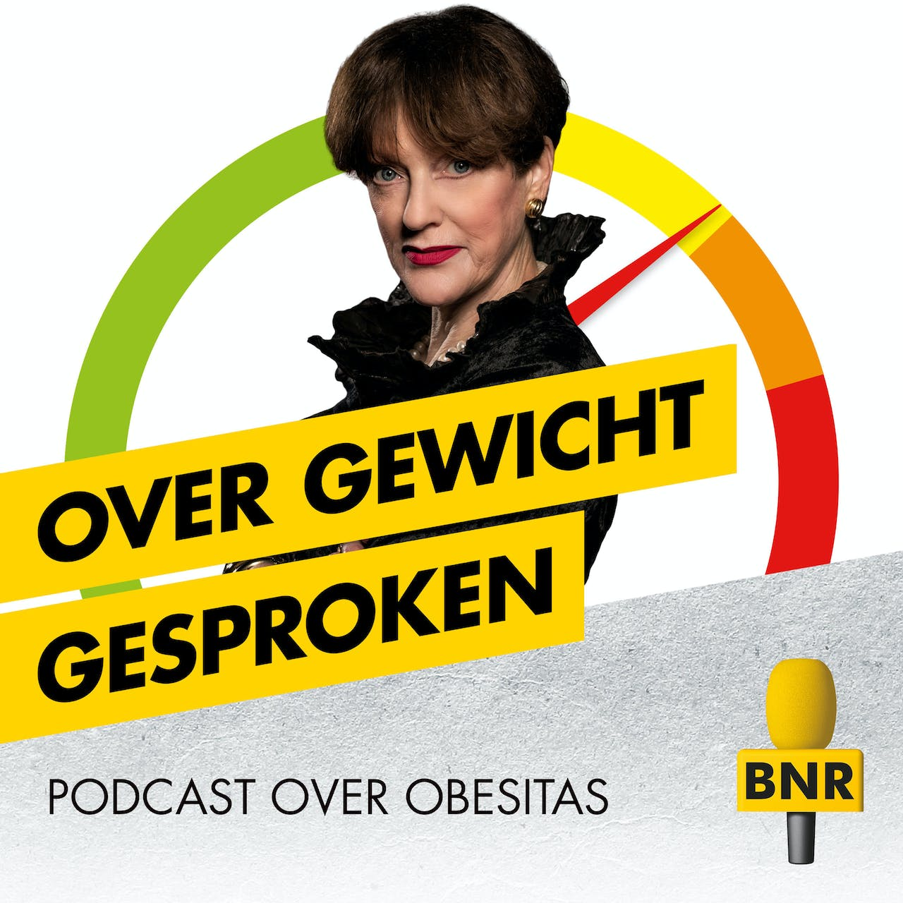 Over Gewicht Gesproken, de podcast over obesitas