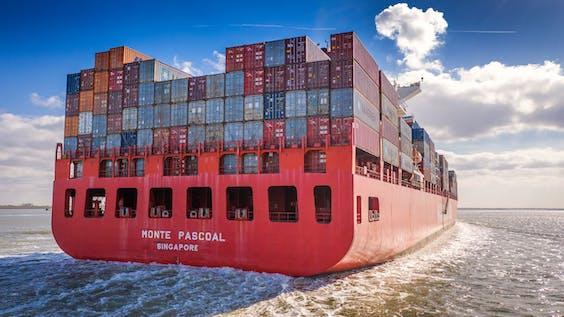 Het containerschip MONTE PASCOAL op de Westerschelde, op weg naar de haven van Antwerpen.