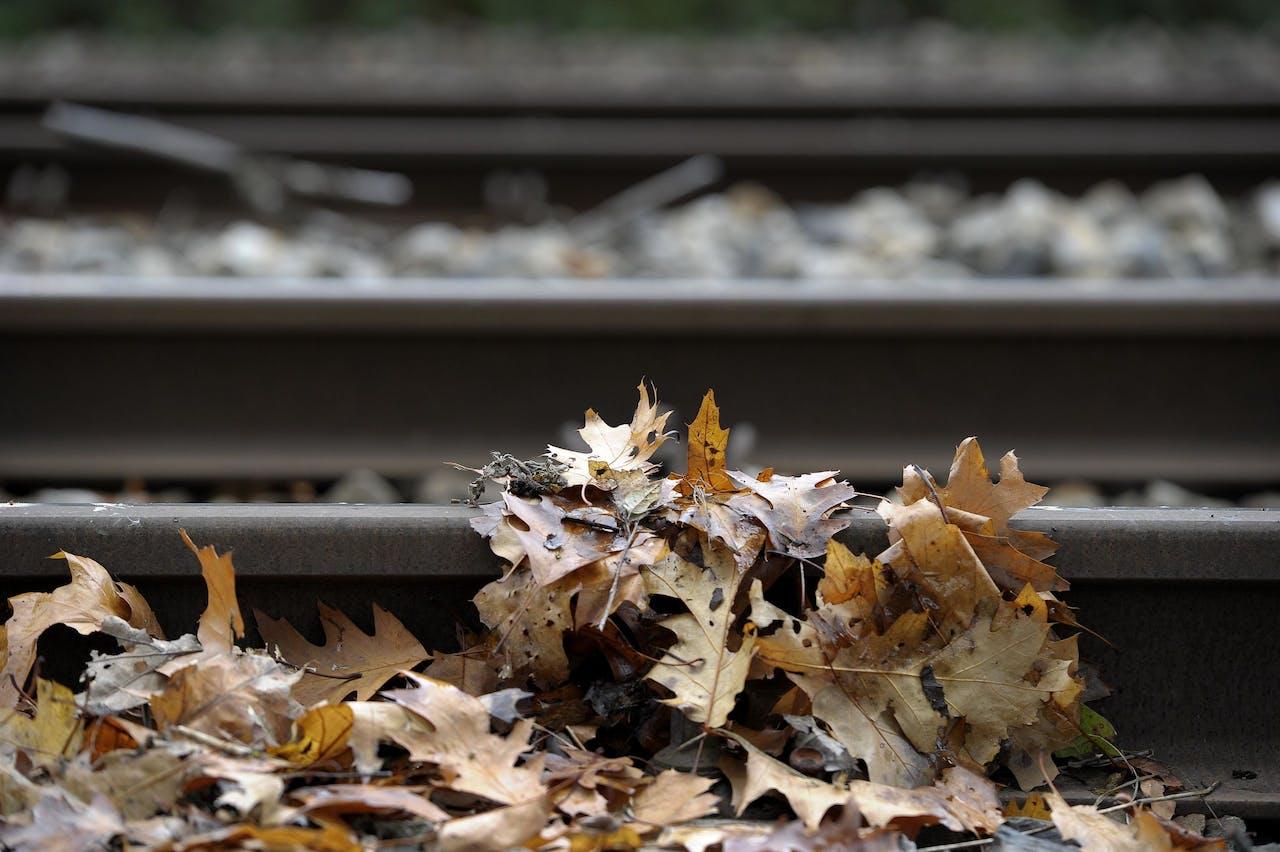 NUTH - ILLUSTRATIEF: jaarlijks terugkerend probleem van blaadjes op de rails.