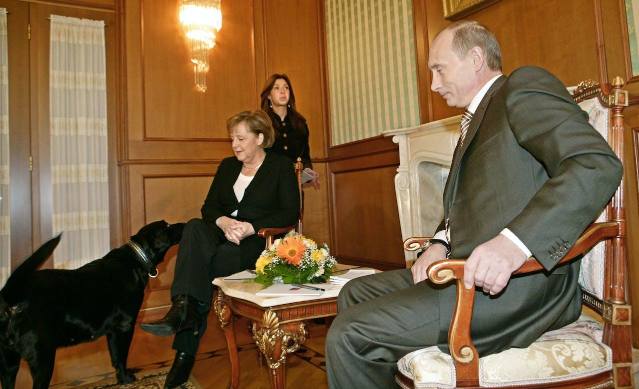 Angela Merkel heeft zich wel eens meer senang gevoeld dan met Poetins labrador Connie in haar buurt.