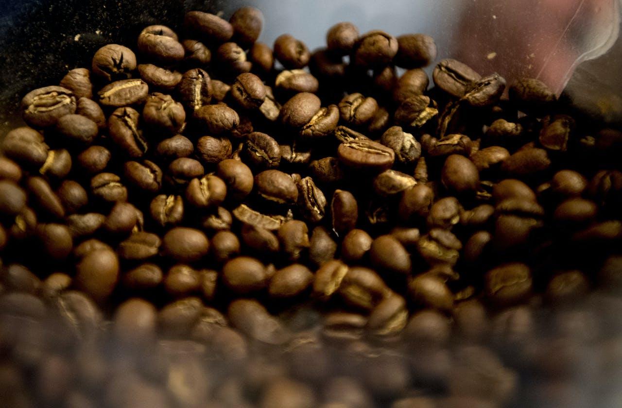 De beste koffiezaak zit in Groningen Black & Bloom ROBIN UTRECHT