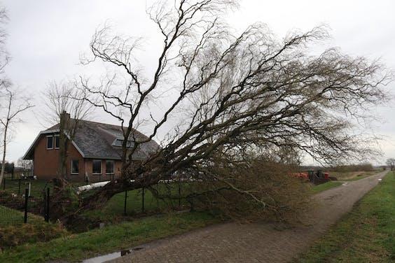 Storm Evert slaat toe