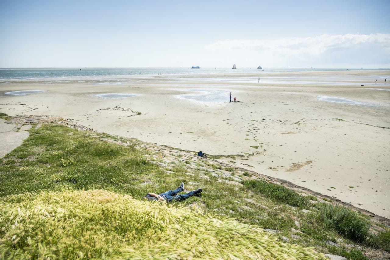 Het strand en de duinen van Terschelling