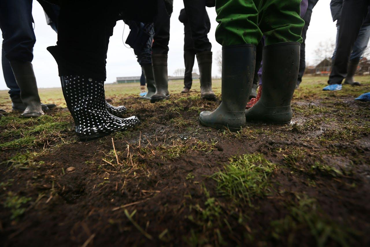 Boeren met de poten in de Friese modder.