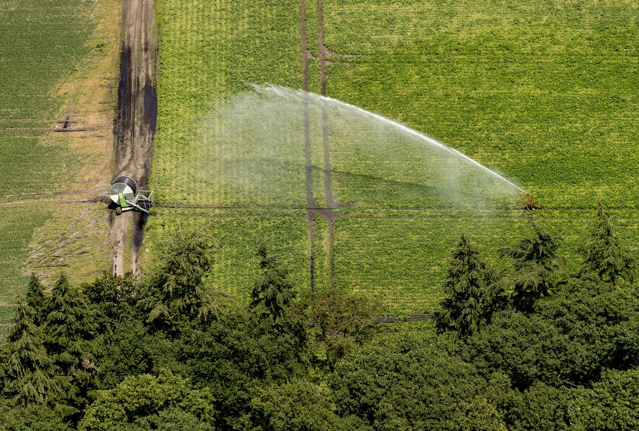 Landbouwgrond bij de Veluwe