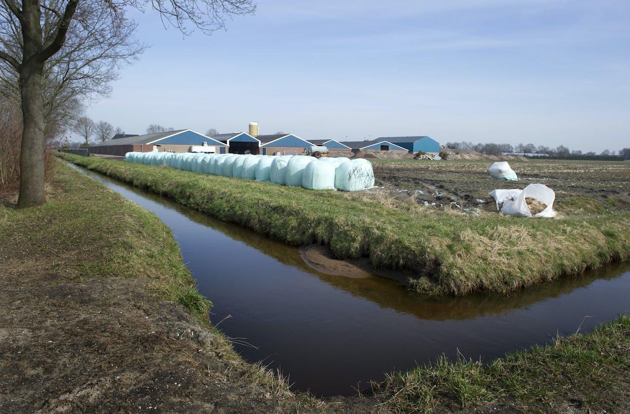 2010-03-18 16:36:00 BOEKEL - Varkenshouderij in Boekel. De Brabantse Staten bespreken vrijdag ideeen uit een burgerinitiatief om veehouders forse beperkingen op te leggen bij uitbreidingsplannen. ANP XTRA LEX VAN LIESHOUT