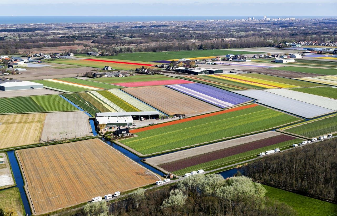 Een luchtfoto van de bollenvelden van de Keukenhof