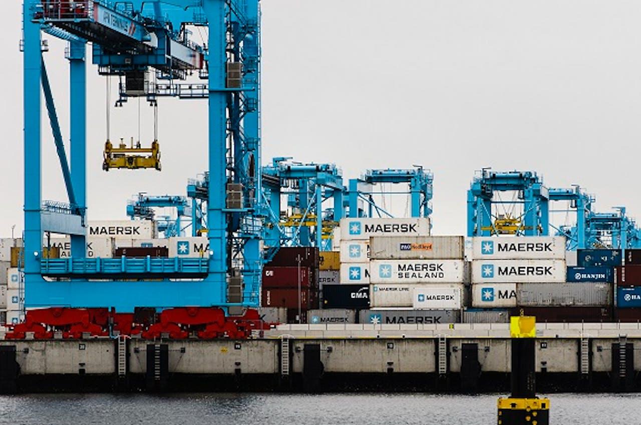 Een containerterminal van APM op de Maasvlakte II. Foto: Remko de Waal/ANP