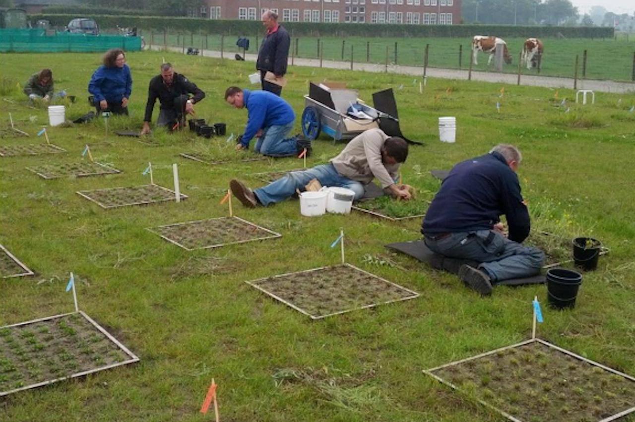 Wetenschappers in het veld (Foto: Liesje Mommer)