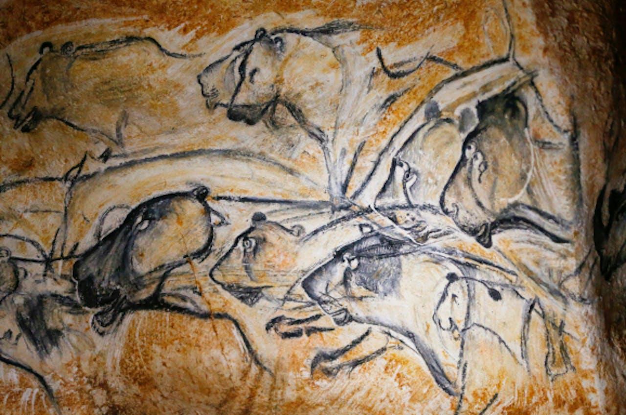 Chauvet grot in Frankrijk. Sommige van de schilderingen hier zijn meer dan 30.000 jaar oud. Foto: ANP
