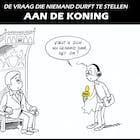 Cartoon 8 mei.jpg