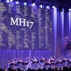MH17 578.jpg
