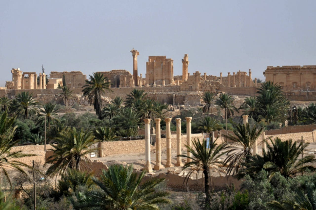 Foto: ANP/AFP - Palmyra