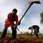 afrika-droogte-578.jpg