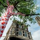Tour Utrecht.jpg