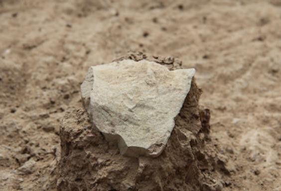Een van de stenen werktuigen, zoals dat drie meter diep in de grond zat (Foto: MPK-WTAP)