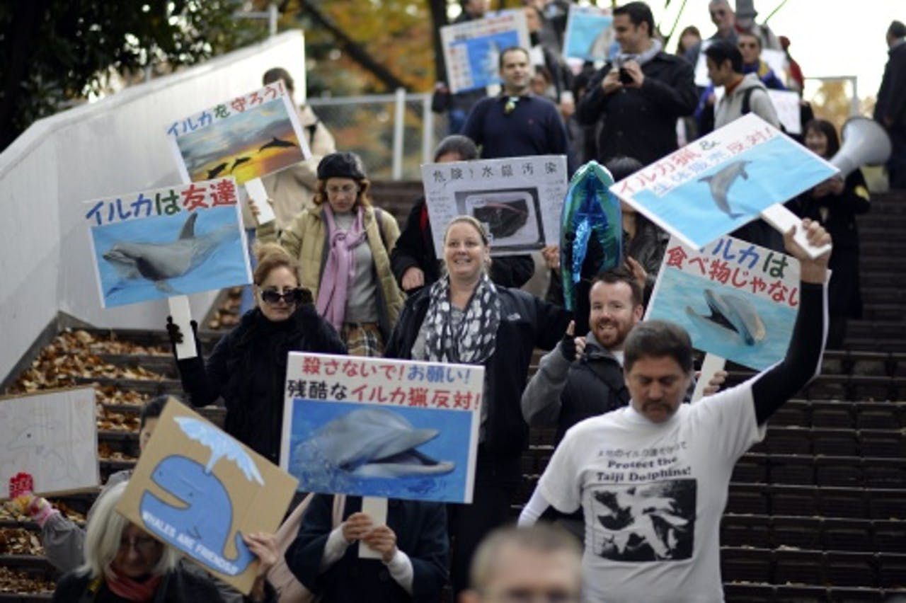 Demonstratie tegen de dolfijnenslacht. EPA