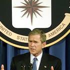 Bush .jpg