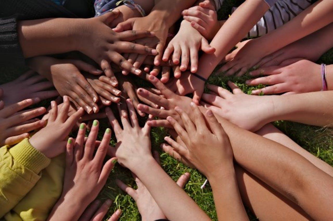 SOD en Fie van der Hoop Fonds wil zichtbaarheid vergroten met nieuwe website
