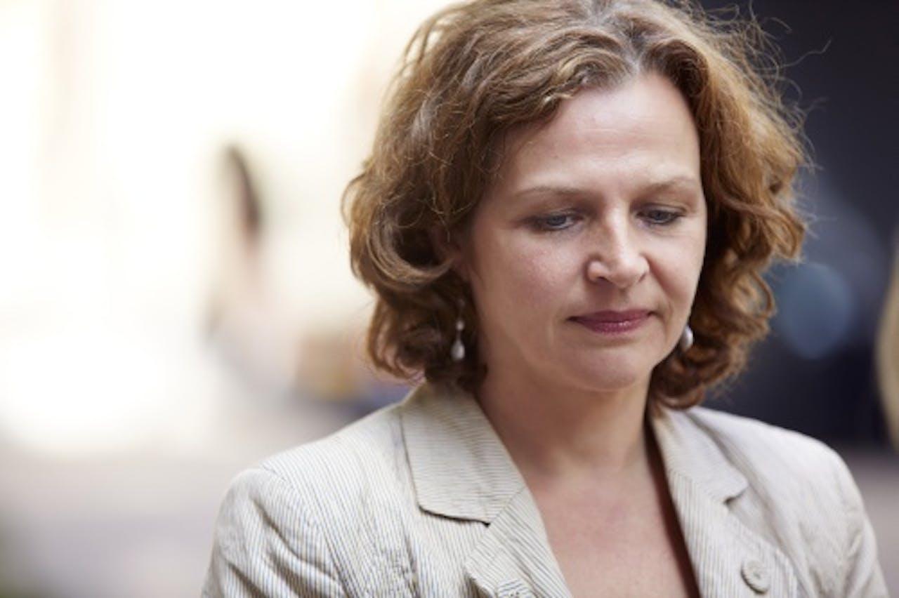 Minister Edith Schippers. ANP