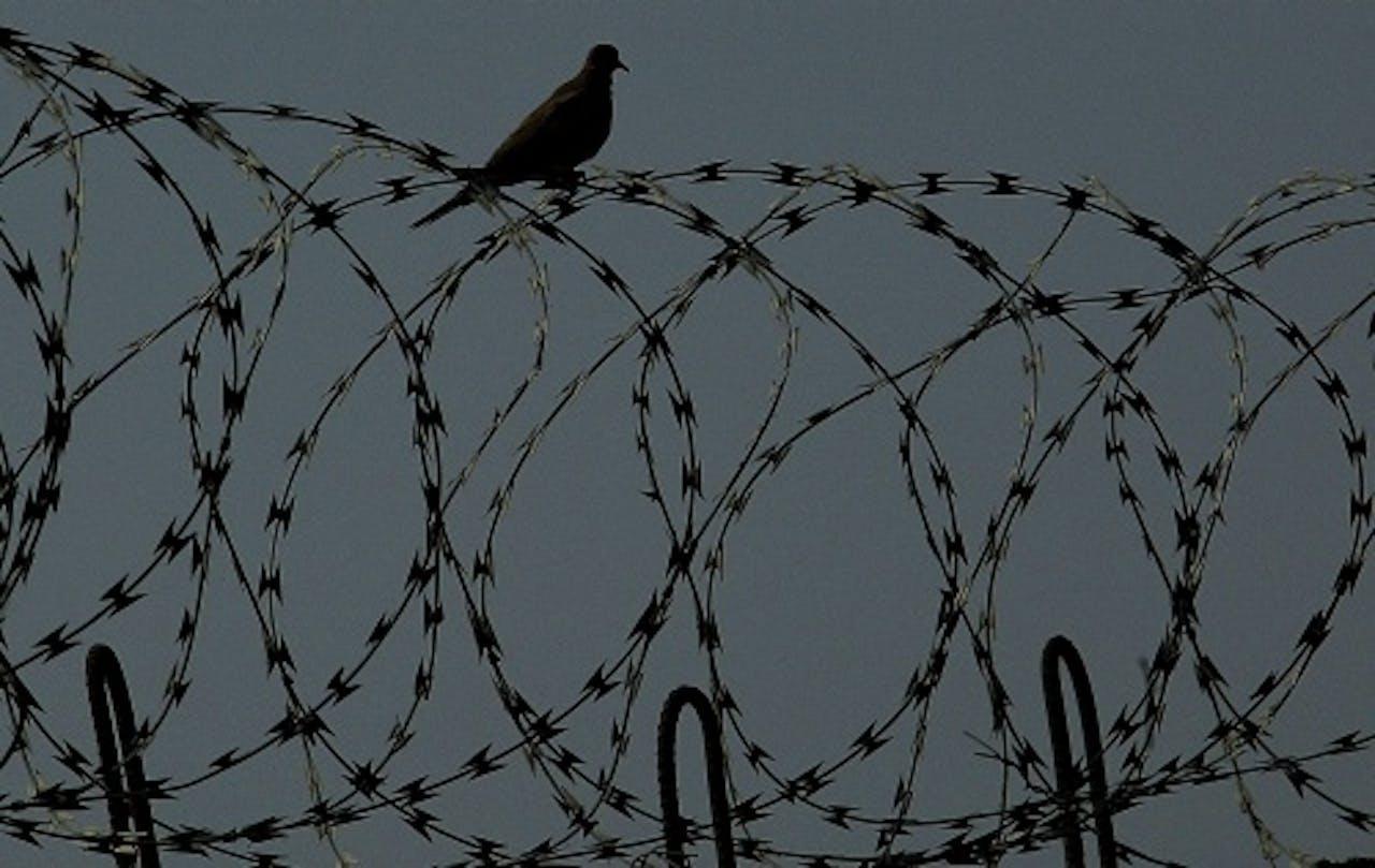 Archief: Abu Ghraib Gevangenis in Irak, EPA