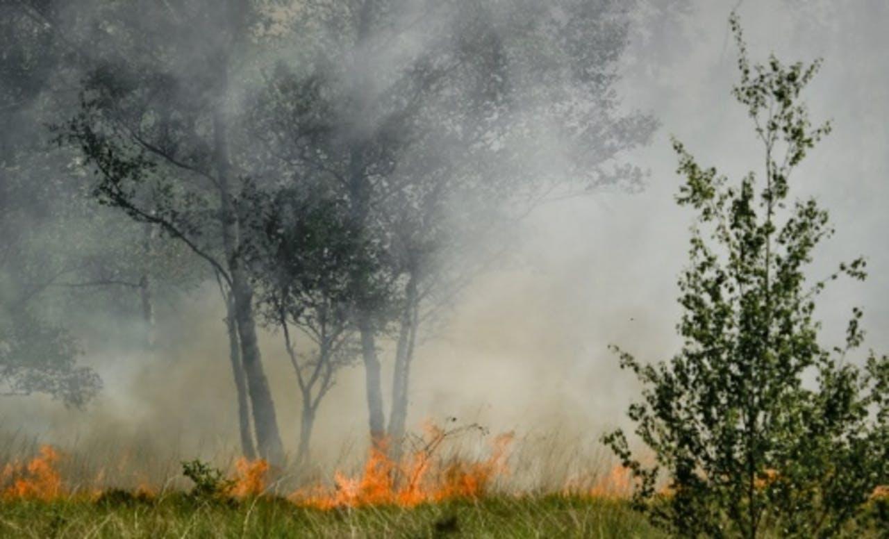 Brand in natuurgebied Aamsveen bij Enschede (archieffoto, juni 2011). ANP