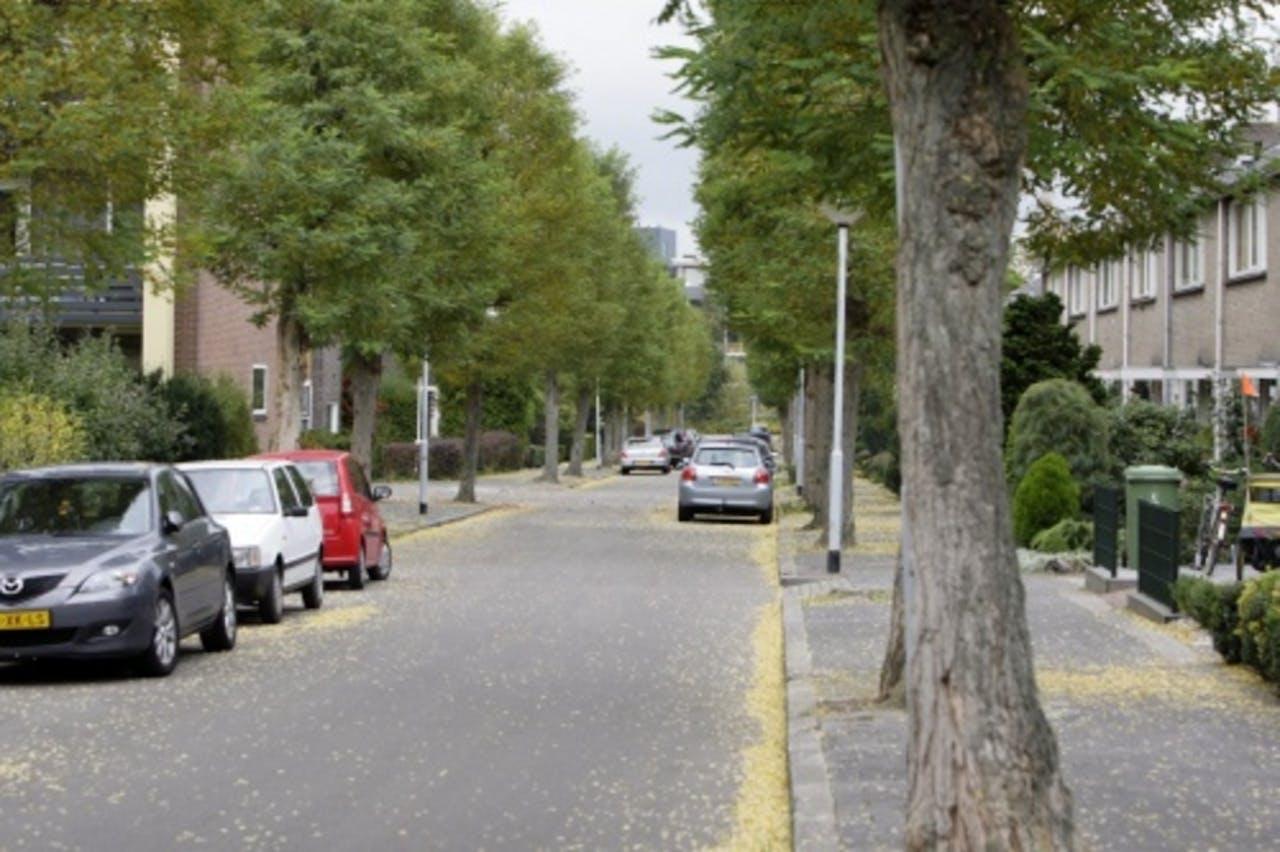 In deze Groningse straat vonden de seksfeesten plaats. ANP