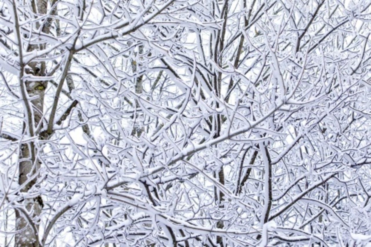 Ook in Zwitserland is het ijskoud. EPA
