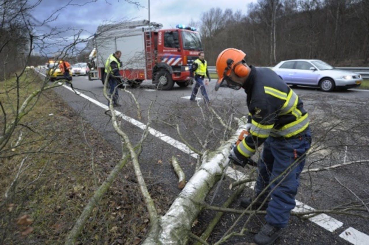 Omgevallen boom op de N281 ter hoogte van Heerlen. ANP