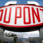 dupont-578.jpg