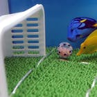 Peptalk-voetbal-vissen-2-578.jpg