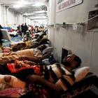 Gewonde-Libiërs.jpg