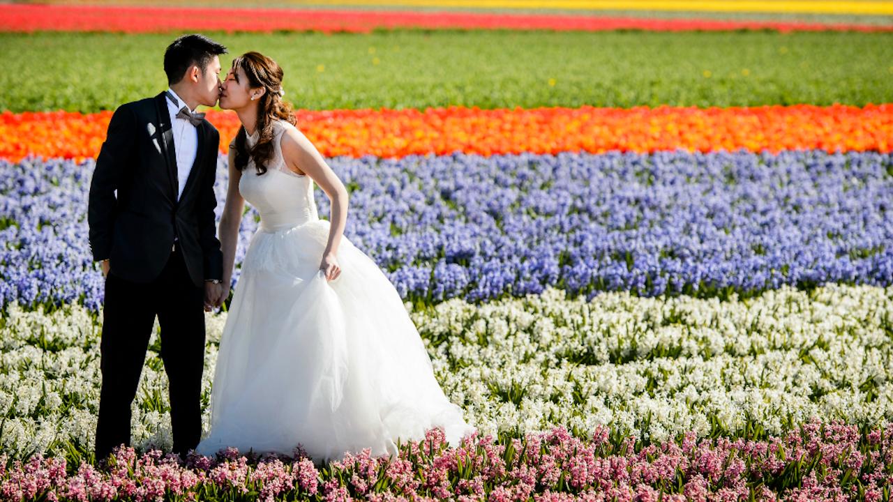 Een bruidspaar in een bollenveld net buiten de Keukenhof (Foto: ANP)