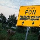pon-fraude-caterpillar.png