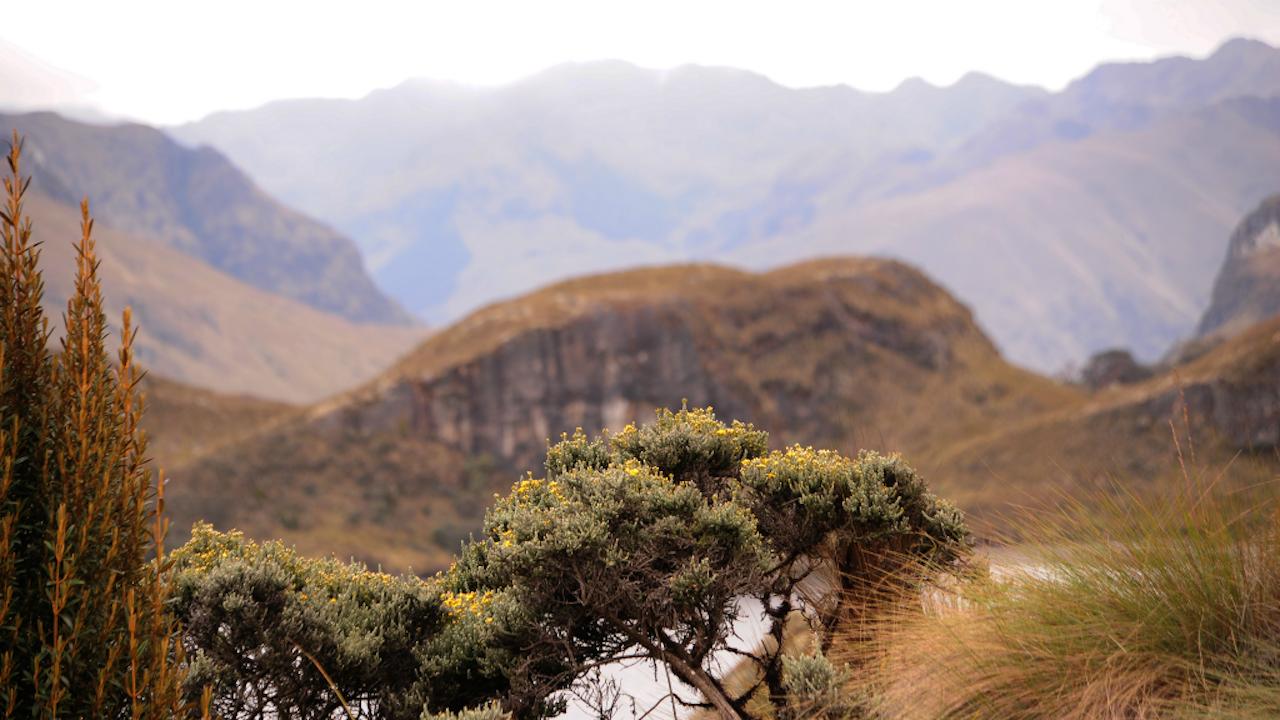 Cajas National Park (Foto: HH)