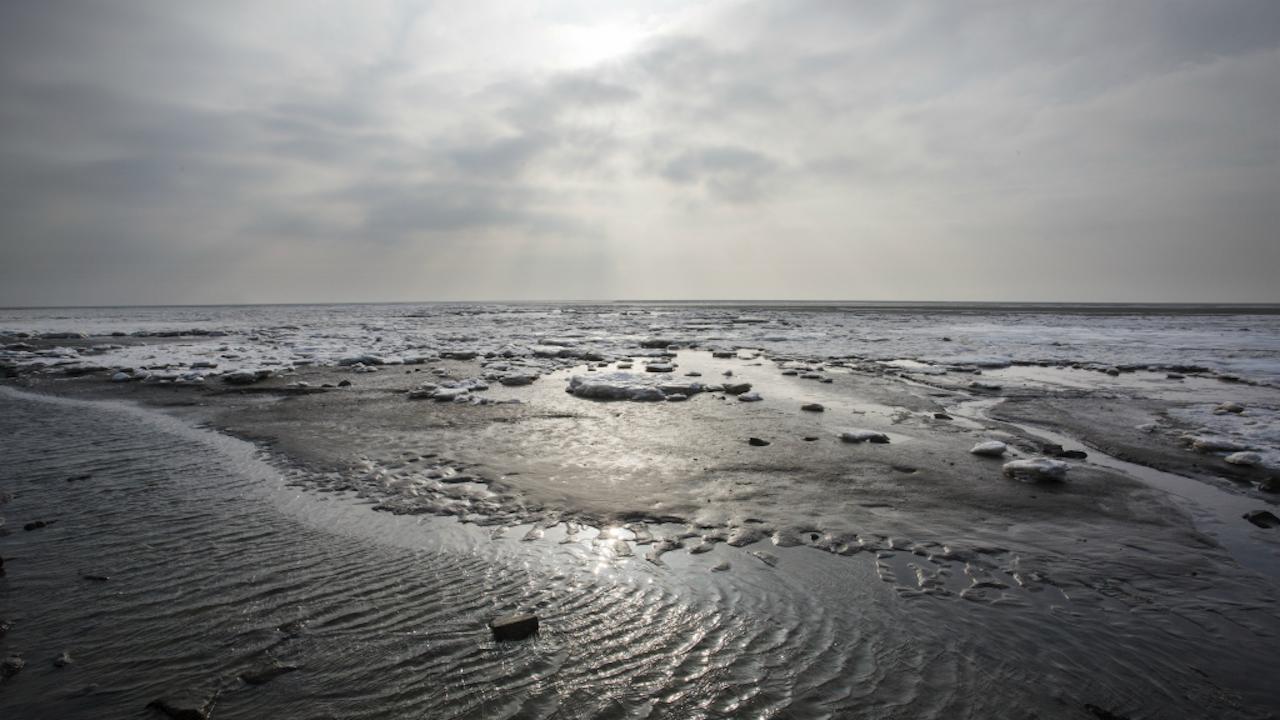 Foto: Sijmen Hendriks/Hollandse Hoogte