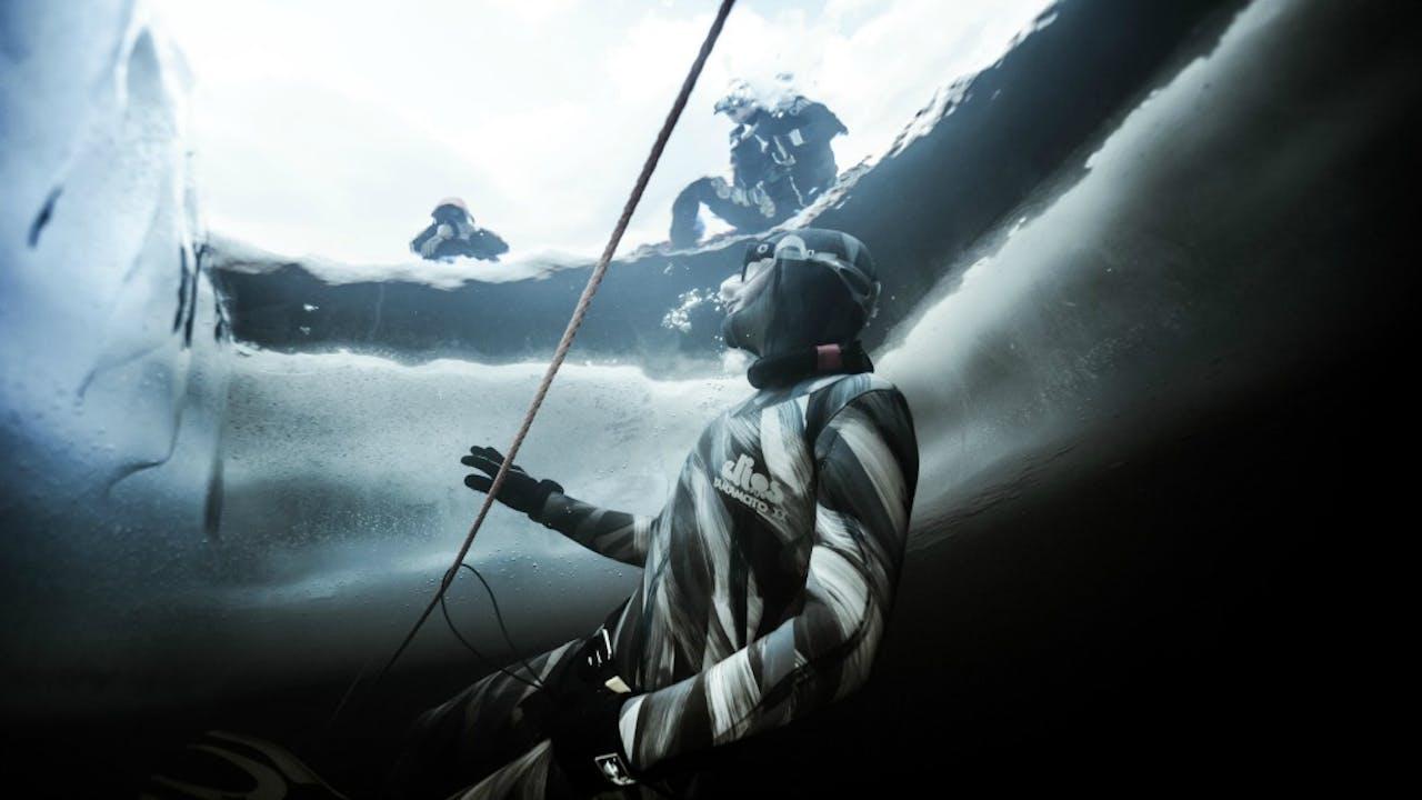 Foto: HH/Fish Eye Freediving/Rex Shutterstock