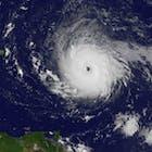 Irma 2.jpg