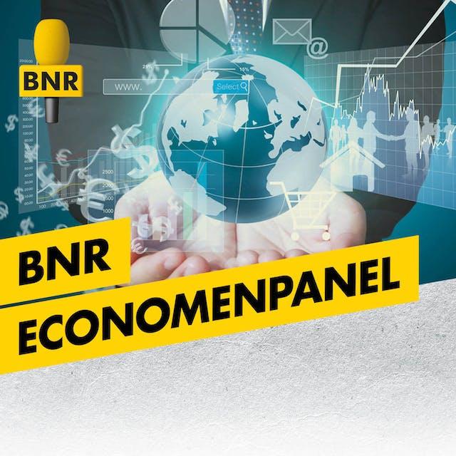 BNR Economenpanel