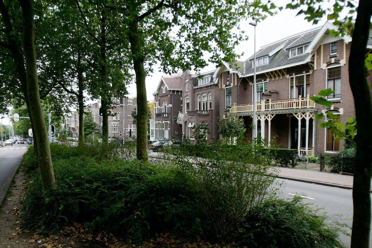 Een groene straat in Arnhem