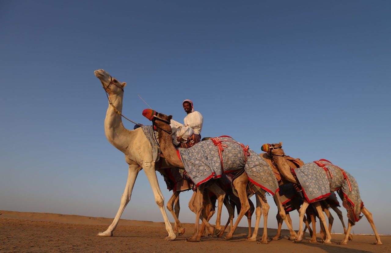 De woestijn van Abu Dhabi