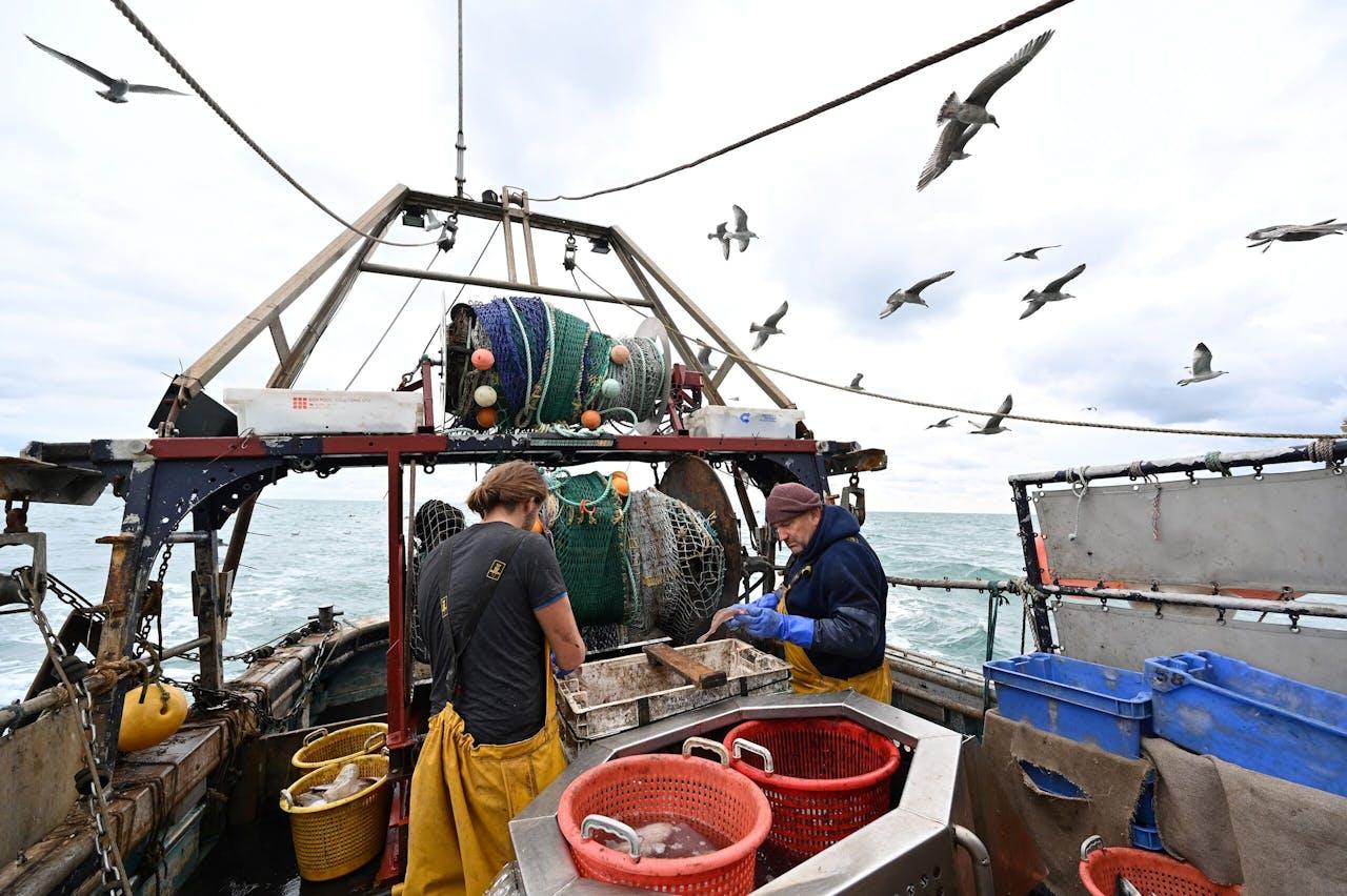 Britse vissers en meeuwen