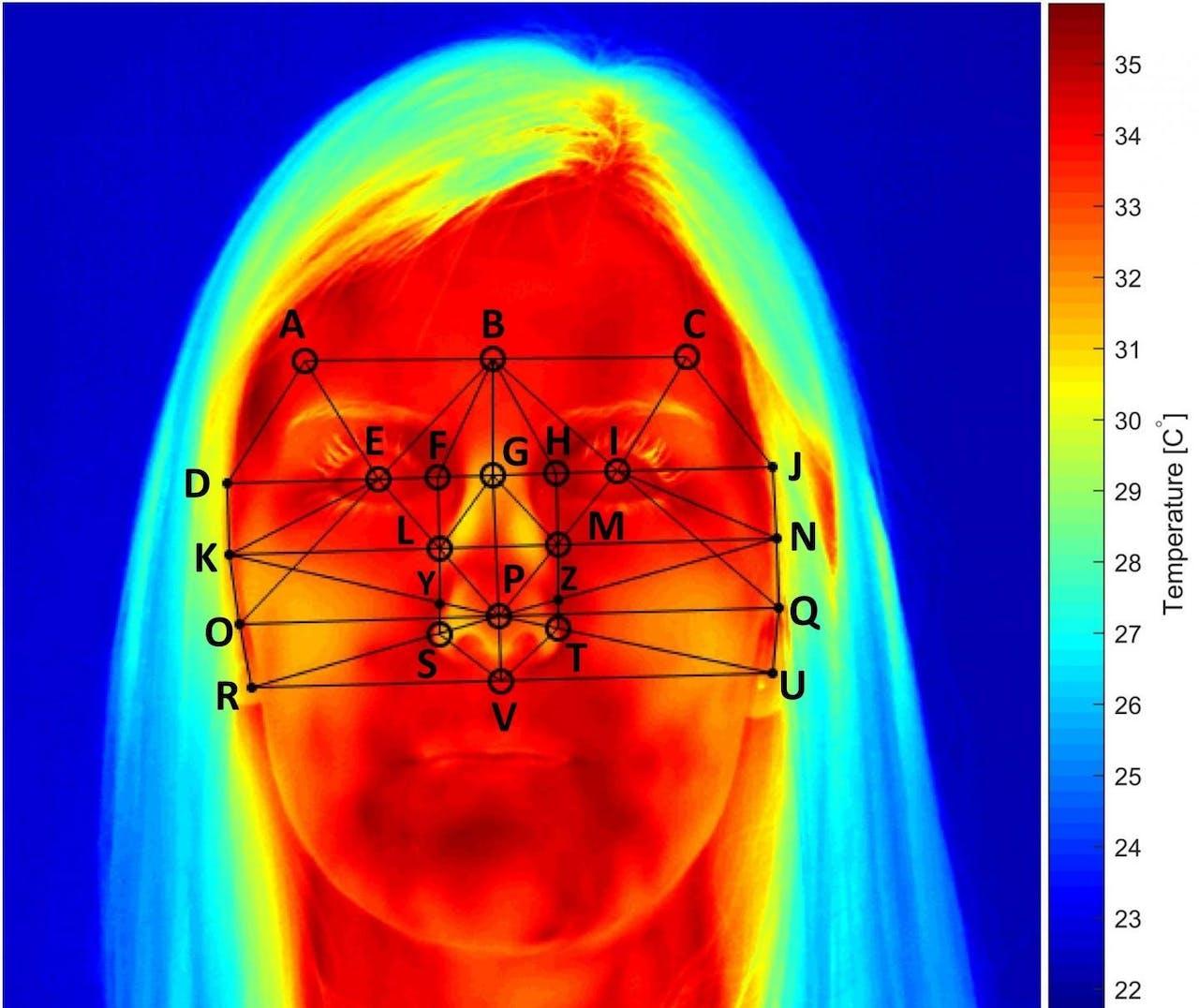 Warmtebeeld uit het onderzoek. Bij hoge concentratie nam de temperatuur van de huid boven de neusvleugels met 2 tot 3 graden Celsius af.
