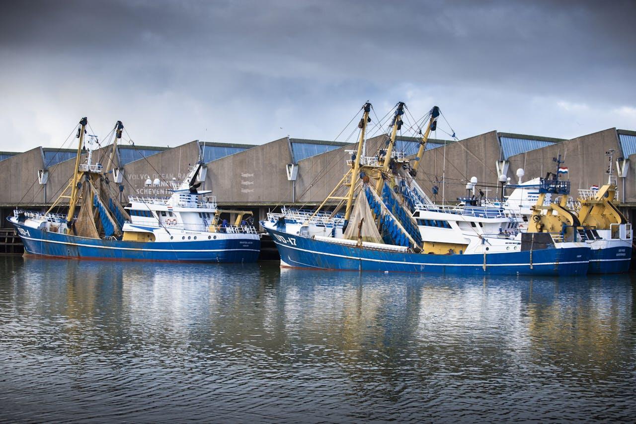SCHEVENINGEN - Vissersboten in de haven van Scheveningen .Door het Brexit-akkoord tussen Londen en Brussel mogen Europese vissers vanaf 1 januari nog 5,5 jaar vissen in de Britse wateren, maar gemiddeld wel met een kwart minder aan vangst.ANP/HH LAURENS VAN PUTTEN
