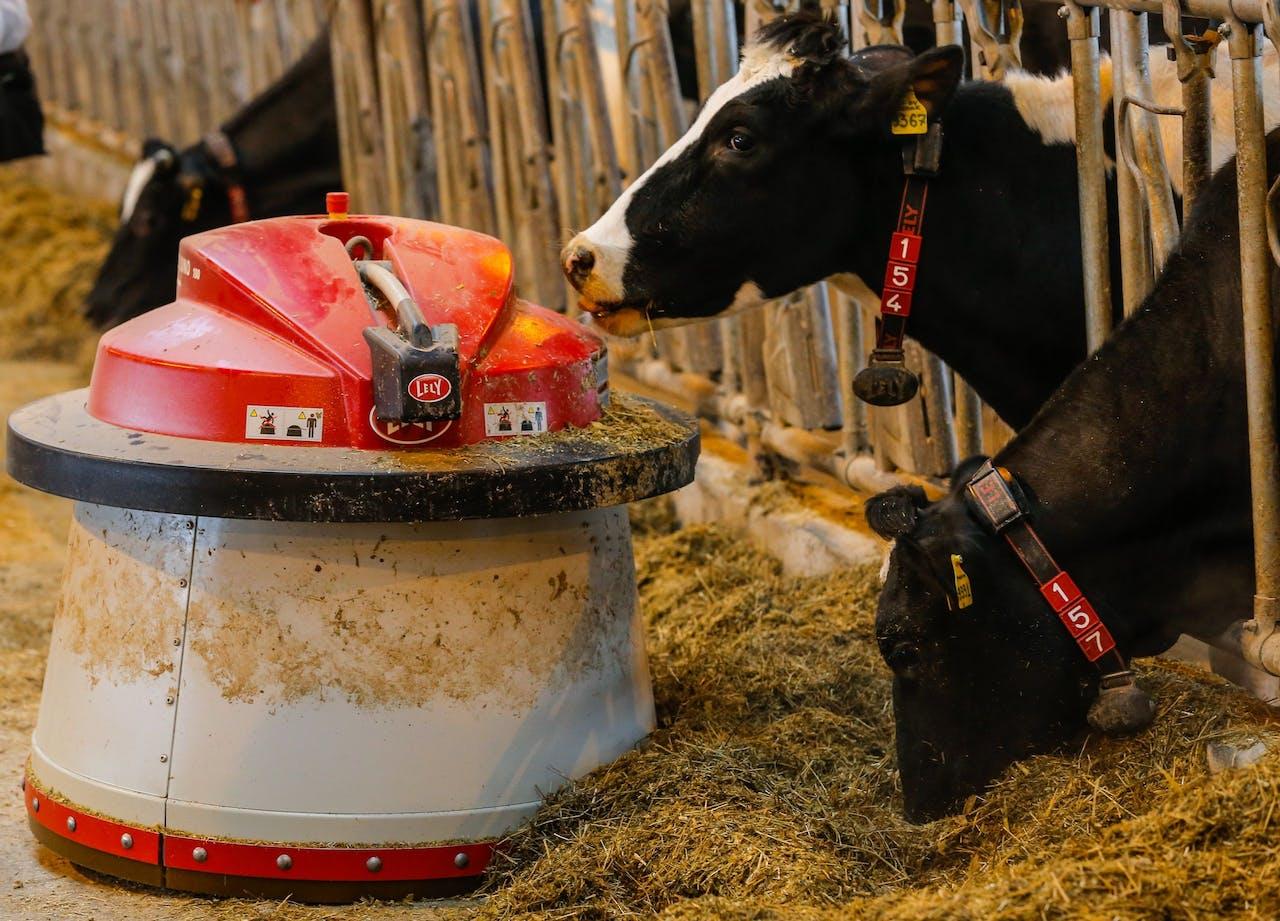 Een voederrobot van Lely op een veehouderij in Rusland.