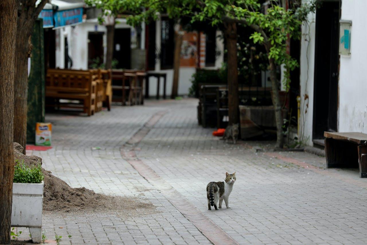 Lege straten in het toeristische district van Ankara