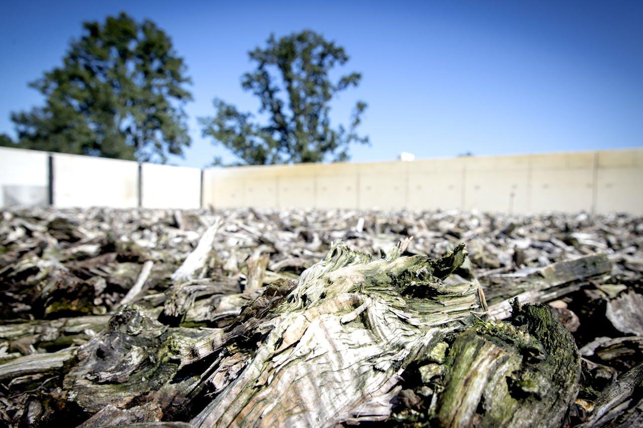 Afval van champignonkweek zogenaamde Champost wordt bij de biomassafabriek Upcycling Gemert omgezet in brandstof. Op het dak van de fabriek ligt een natuurlijk filter van hout om luchtjes van het verwerking proces tegen te gaan.