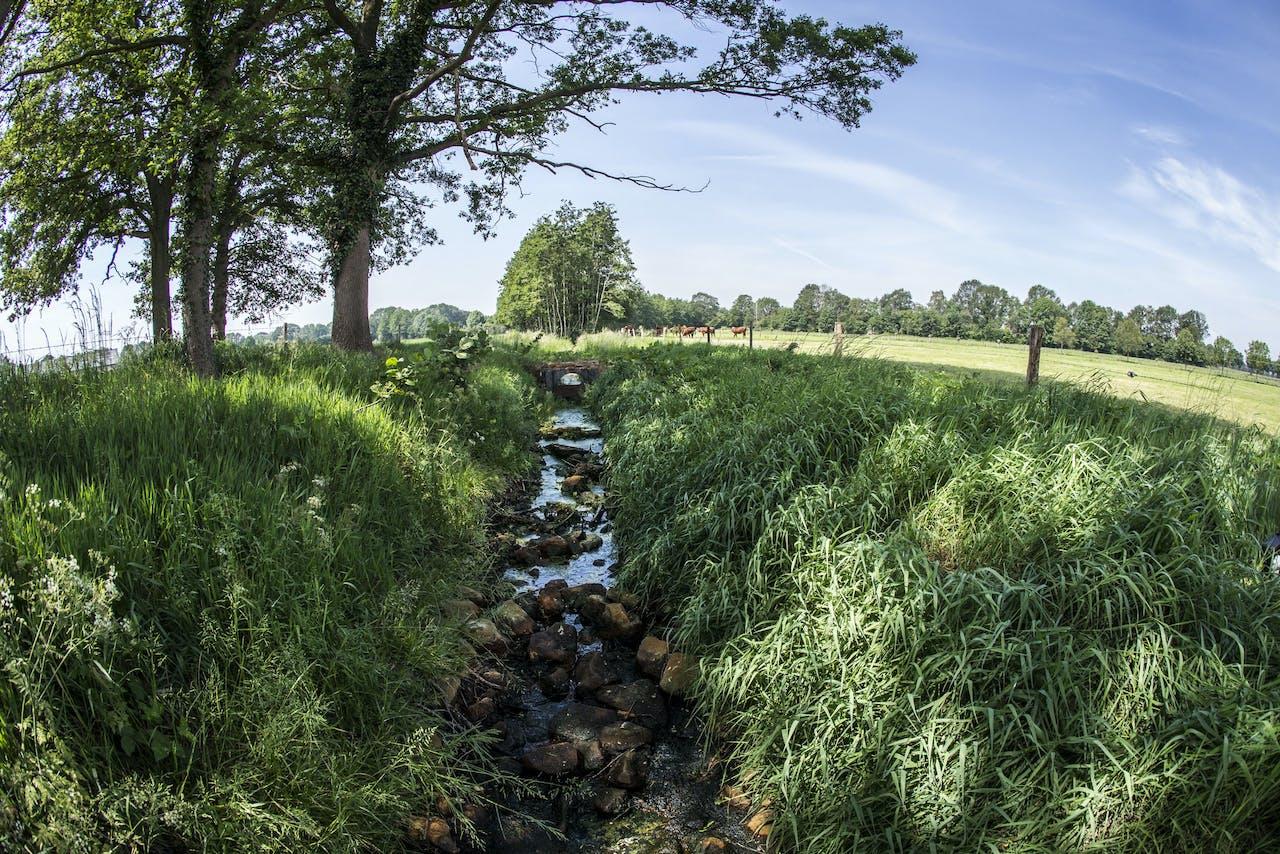 Een beek in het landbouwgebied bij het Achterhoekse Lievelde is droog komen liggen.